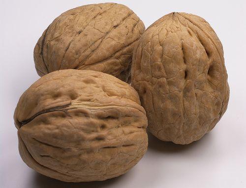 Noci: La frutta secca è ricca in Magnesio