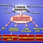 Stress Ossidativo (clicka per ingrandire)