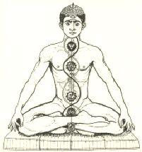 posizione del loto